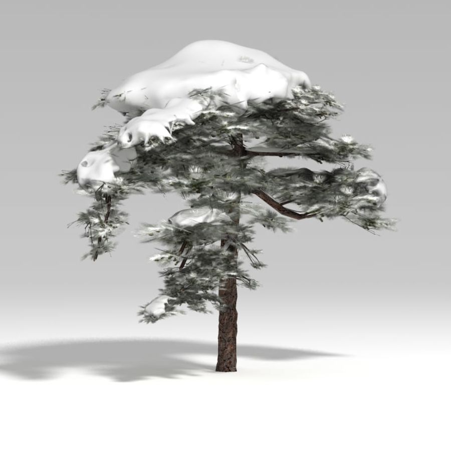 Snowtree V1 royalty-free 3d model - Preview no. 3