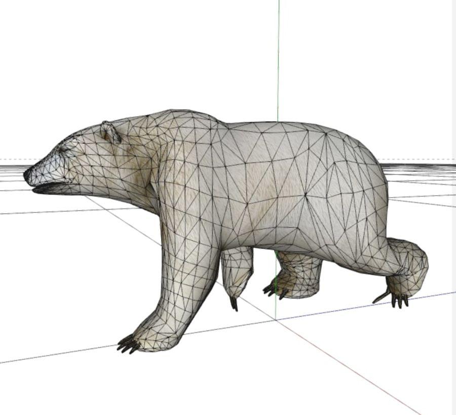 Polar Bear royalty-free 3d model - Preview no. 7