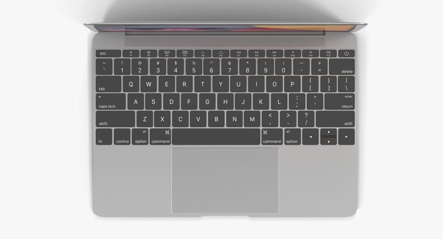 Apple MacBook Space Gray royalty-free 3d model - Preview no. 7