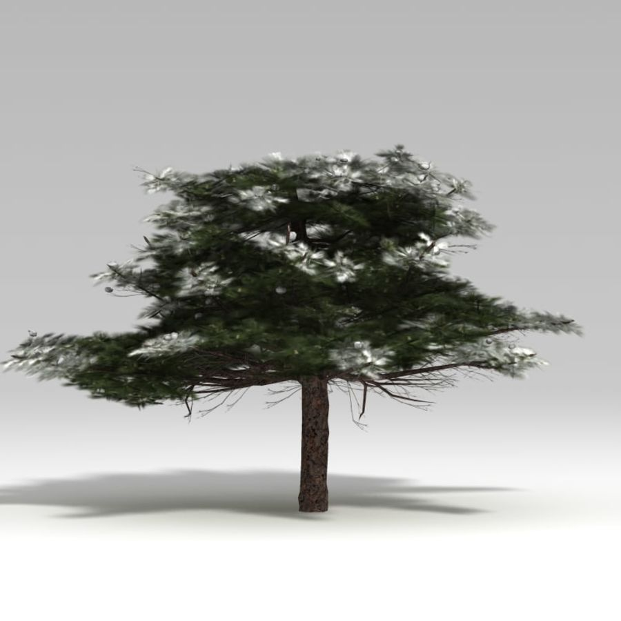 Schneebaum V2 royalty-free 3d model - Preview no. 4
