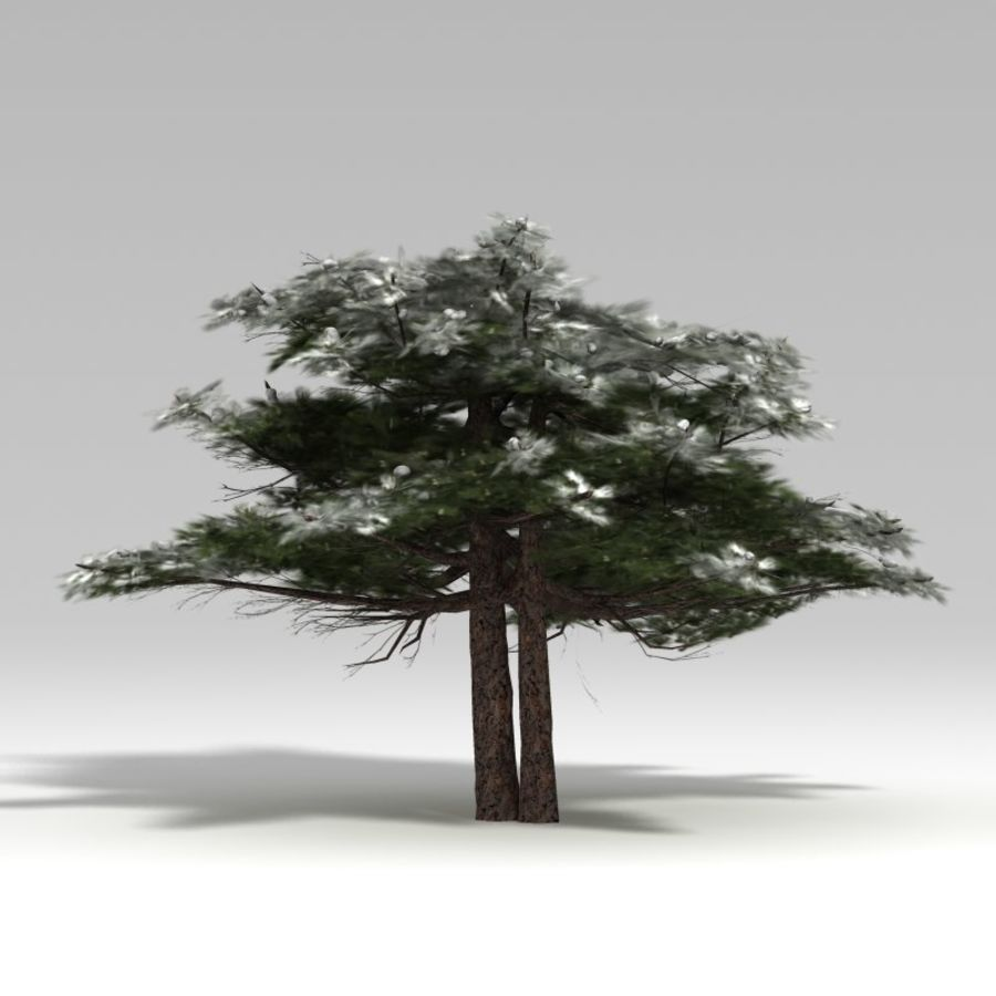 Schneebaum V2 royalty-free 3d model - Preview no. 6