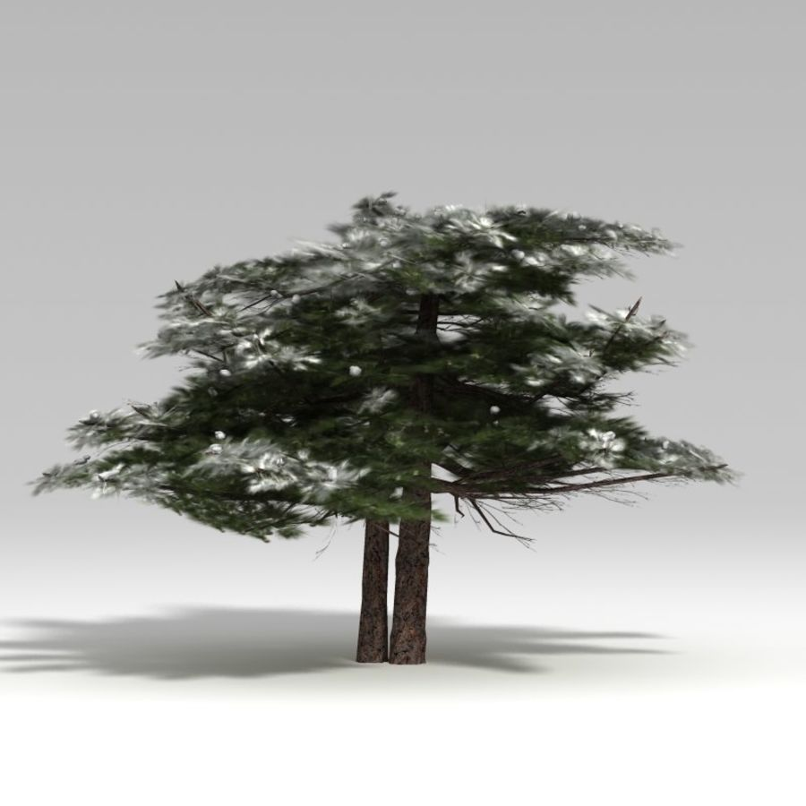 Schneebaum V2 royalty-free 3d model - Preview no. 3