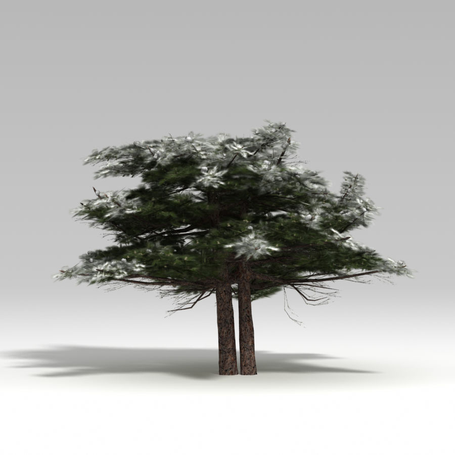 Schneebaum V2 royalty-free 3d model - Preview no. 1