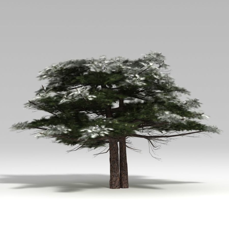 Schneebaum V2 royalty-free 3d model - Preview no. 5