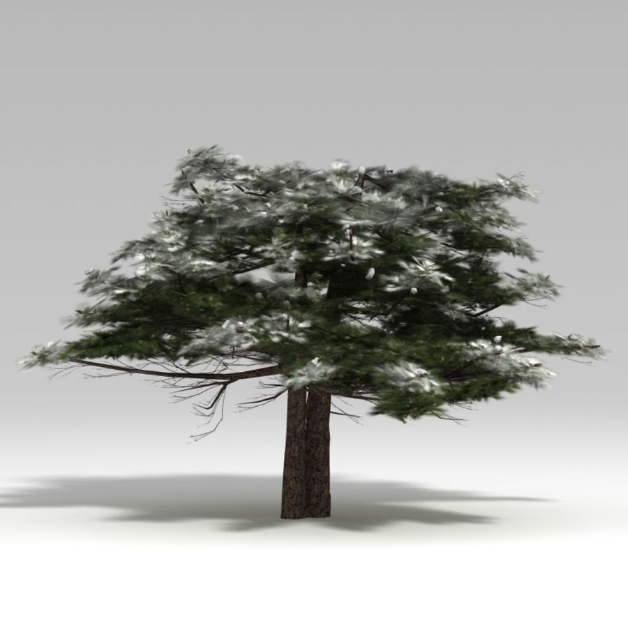 Schneebaum V2 royalty-free 3d model - Preview no. 2