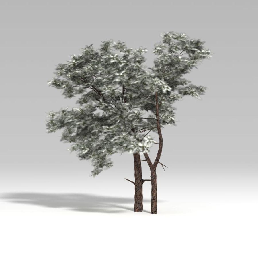 スノーツリーV3 royalty-free 3d model - Preview no. 2