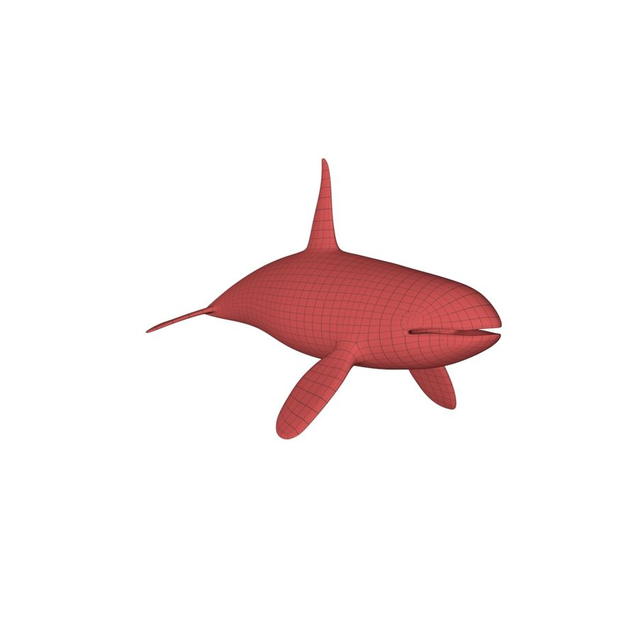 Orca whale base mesh royalty-free 3d model - Preview no. 2