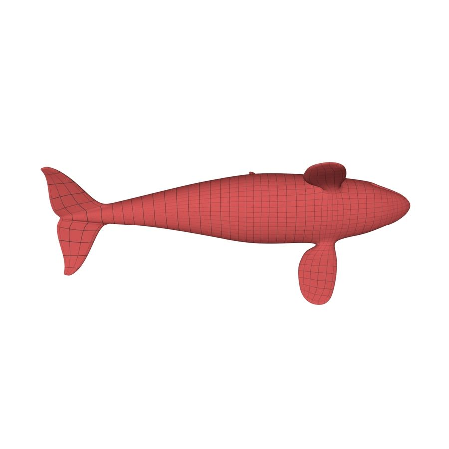 Orca whale base mesh royalty-free 3d model - Preview no. 6