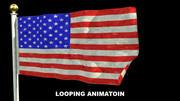 Animation de flage simple 3d model