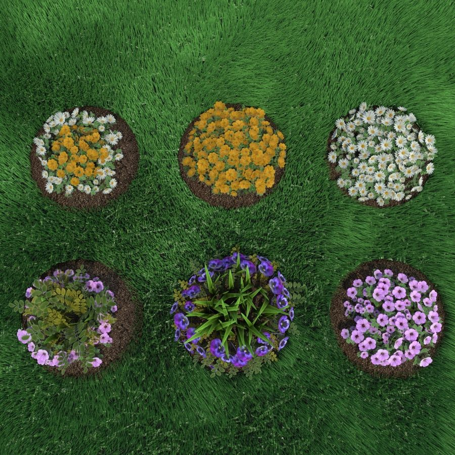 Flower Bushes royalty-free 3d model - Preview no. 1