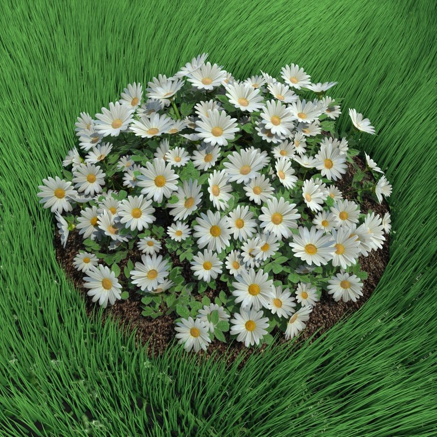 Flower Bushes royalty-free 3d model - Preview no. 7