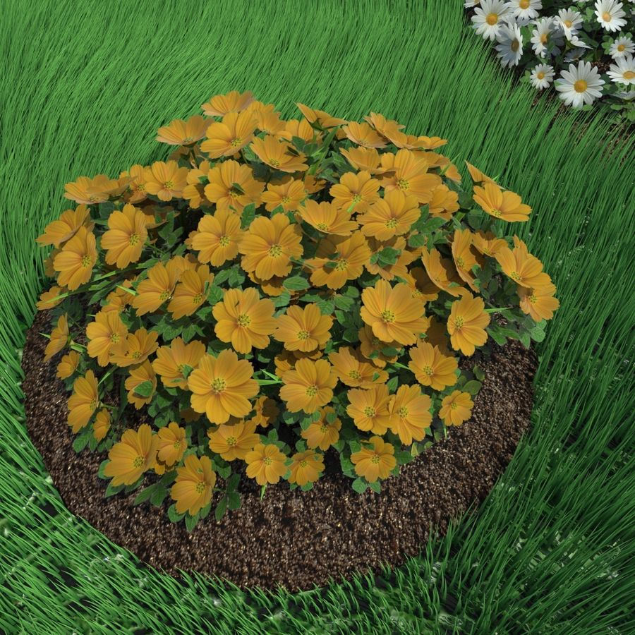 Flower Bushes royalty-free 3d model - Preview no. 8