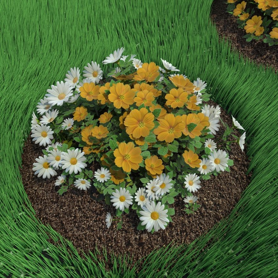 Flower Bushes royalty-free 3d model - Preview no. 9
