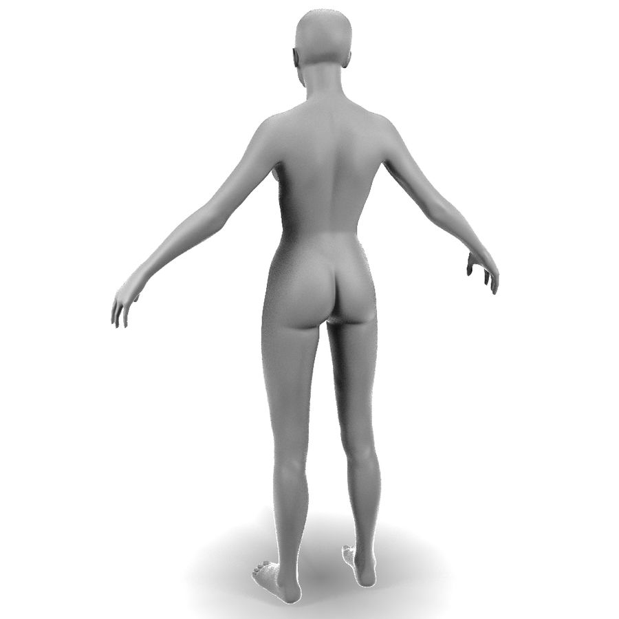 Corps féminin royalty-free 3d model - Preview no. 3