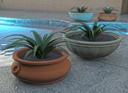 Outdoor Tuscan Planter Pot and Plant 3d model