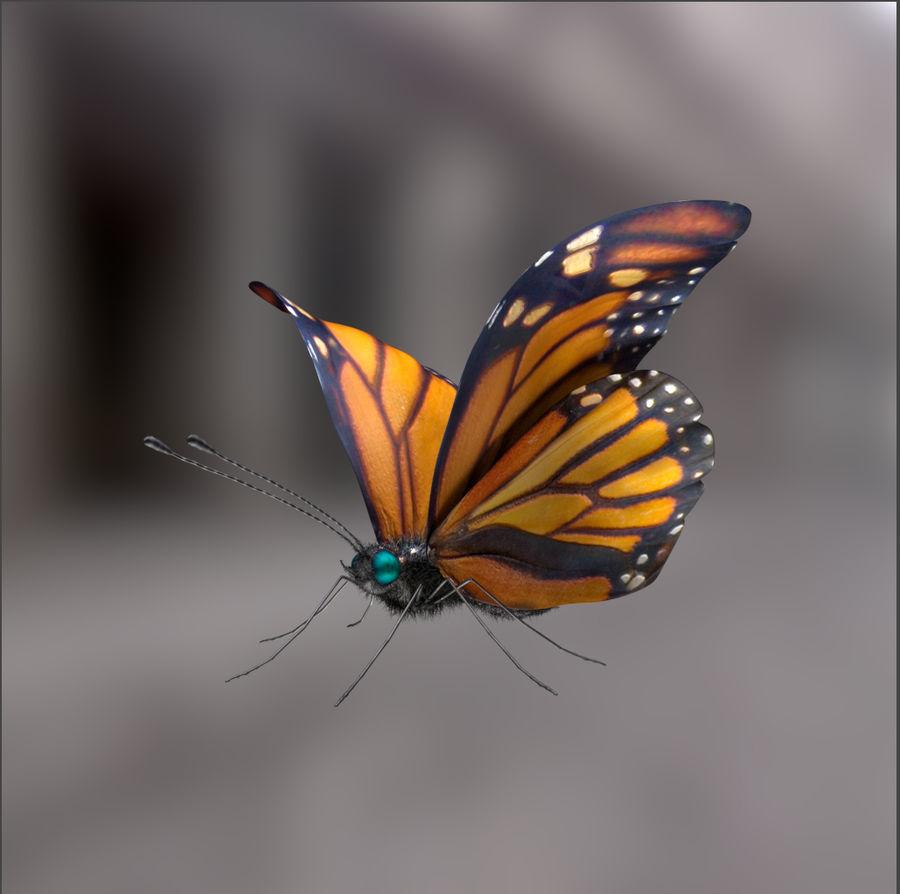 borboleta royalty-free 3d model - Preview no. 10