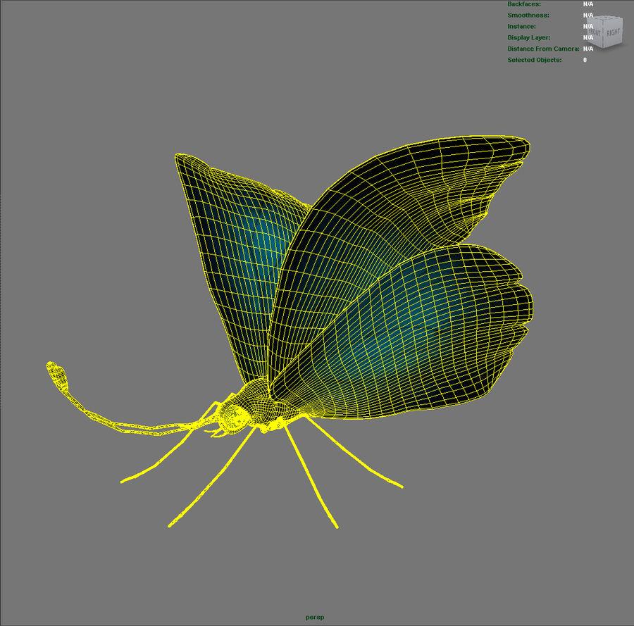 borboleta royalty-free 3d model - Preview no. 11