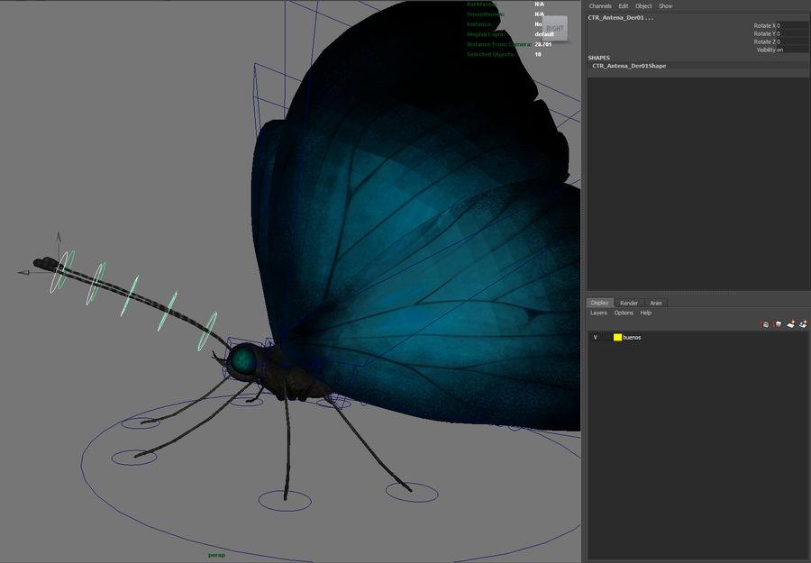 borboleta royalty-free 3d model - Preview no. 13