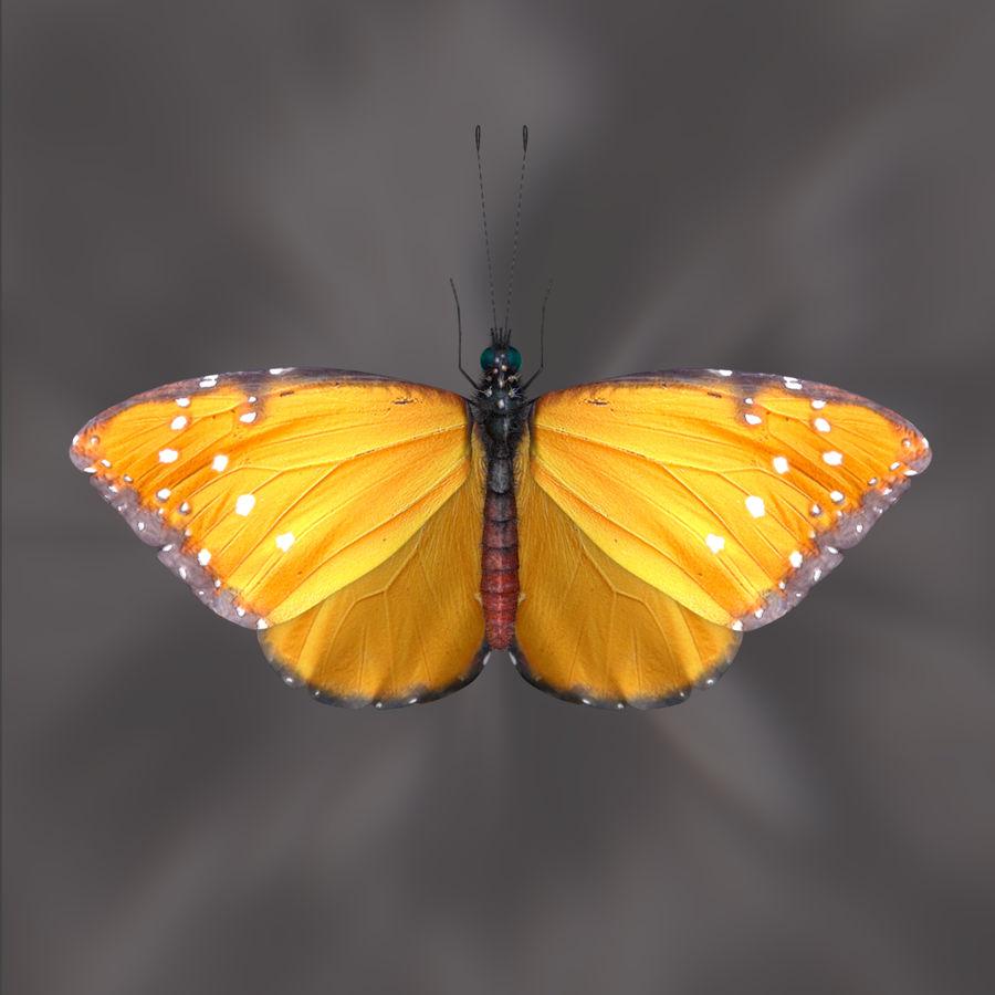 borboleta royalty-free 3d model - Preview no. 6