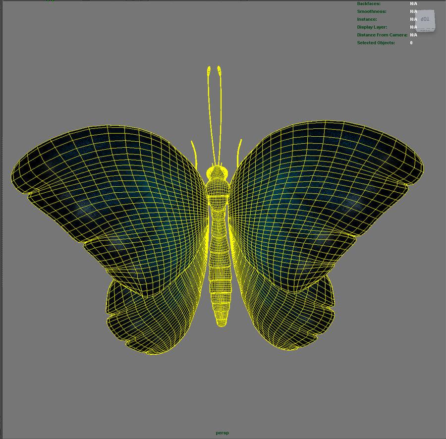 borboleta royalty-free 3d model - Preview no. 12