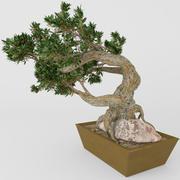 bonsaï 3d model