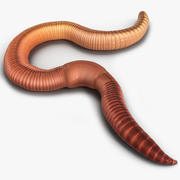 Earth Worm Pose 2 3d model