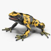 독 다트 개구리 노랑 3d model