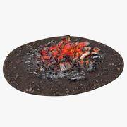 火の灰と残り火 3d model