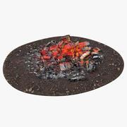 Cinzas e brasas de fogo 3d model