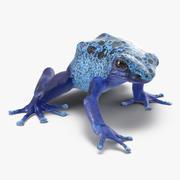 Poison Dart Frog Pose 3 3D模型 3d model