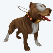 仅限扩散游戏的斗牛犬 3d model