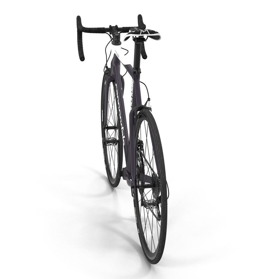 Road Bike Cannondale royalty-free 3d model - Preview no. 13