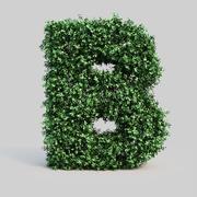 黄雀字母表B 3d model