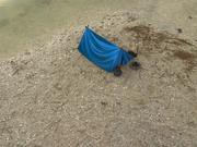 Namiot ręcznie malowany 3d model