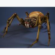 Spider-foulbrood 3d model