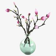 Magnolia blommor 3d model
