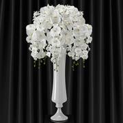 Orchid phalaenopsis bouquet 3d model