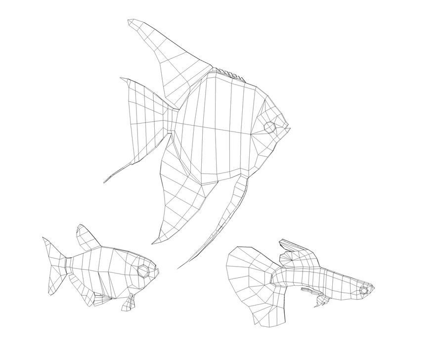 colección de peces royalty-free modelo 3d - Preview no. 4
