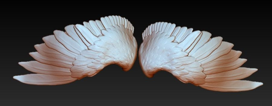 Coppia di ali di uccello / angelo / aquila / animale royalty-free 3d model - Preview no. 3