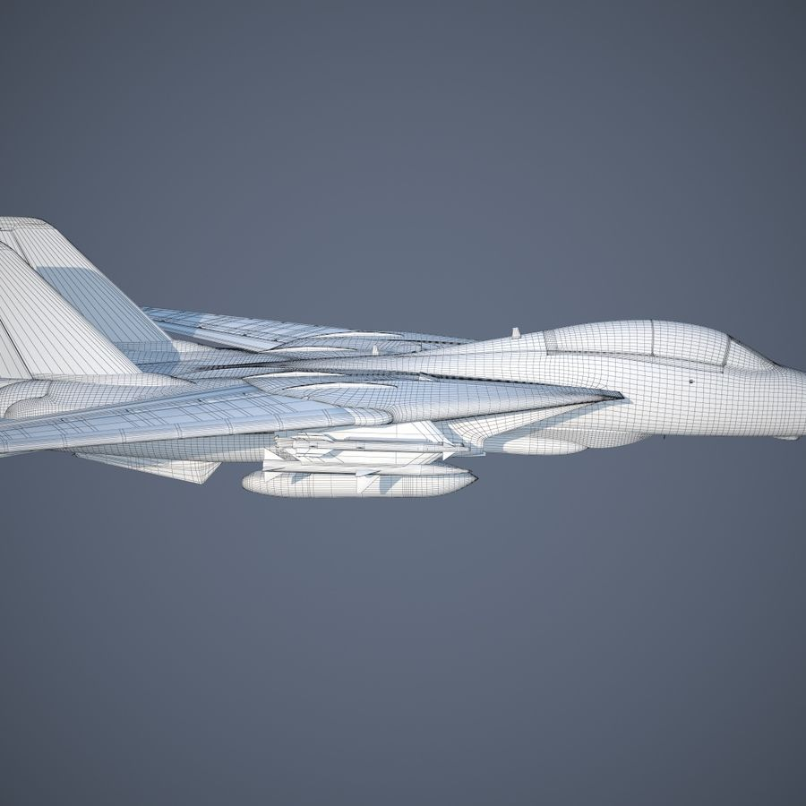 F-14A Tomcat VF-84 Jolly Rogers 1977 royalty-free 3d model - Preview no. 27