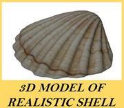 现实壳 3d model