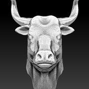 głowa byka 3d model