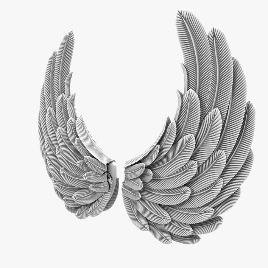 Wings royalty-free 3d model - Preview no. 7