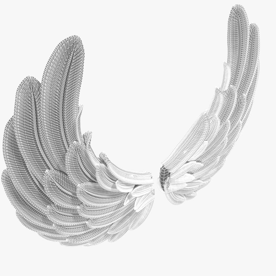 Wings royalty-free 3d model - Preview no. 12