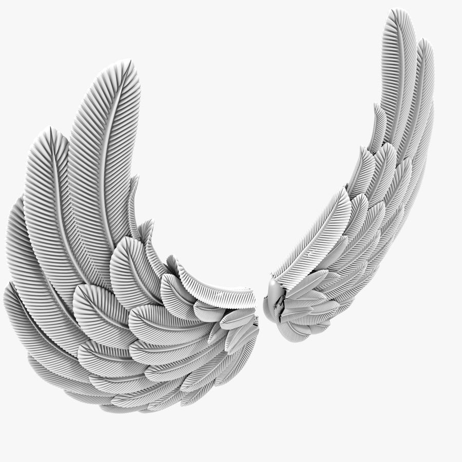 Wings royalty-free 3d model - Preview no. 5