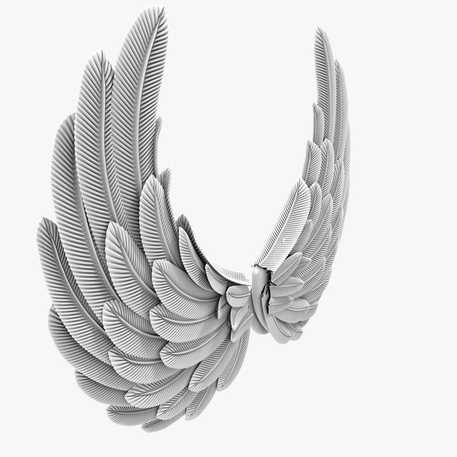Wings royalty-free 3d model - Preview no. 4
