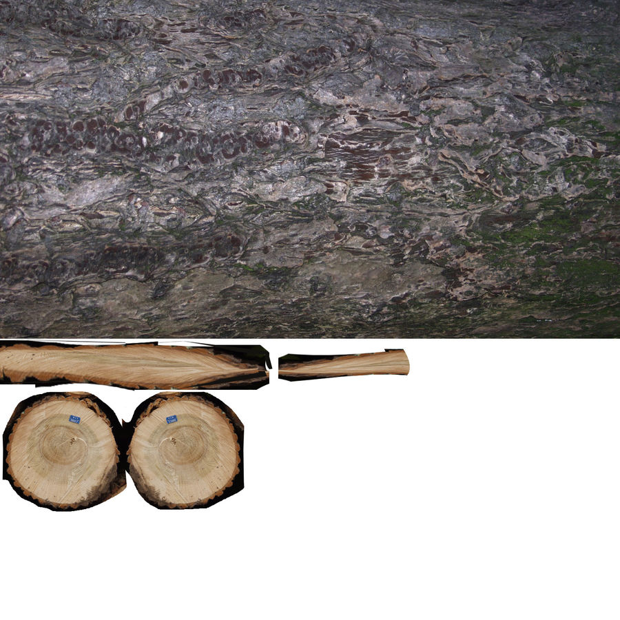 set van houten logs royalty-free 3d model - Preview no. 31
