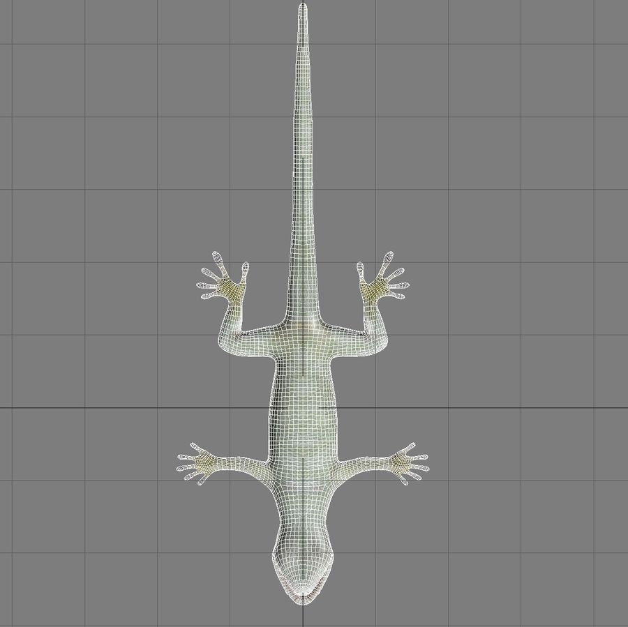 Lizard 3D Lowpoly Model Rigged & Animated royalty-free 3d model - Preview no. 14