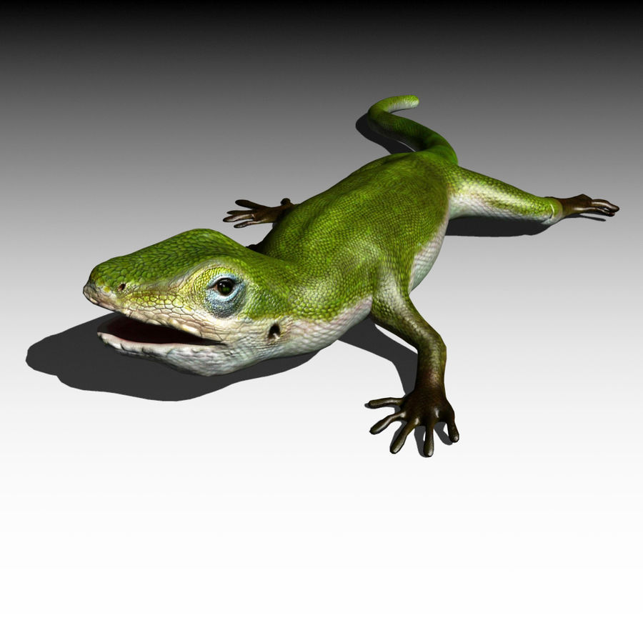 Lizard 3D Lowpoly Model Rigged & Animated royalty-free 3d model - Preview no. 5