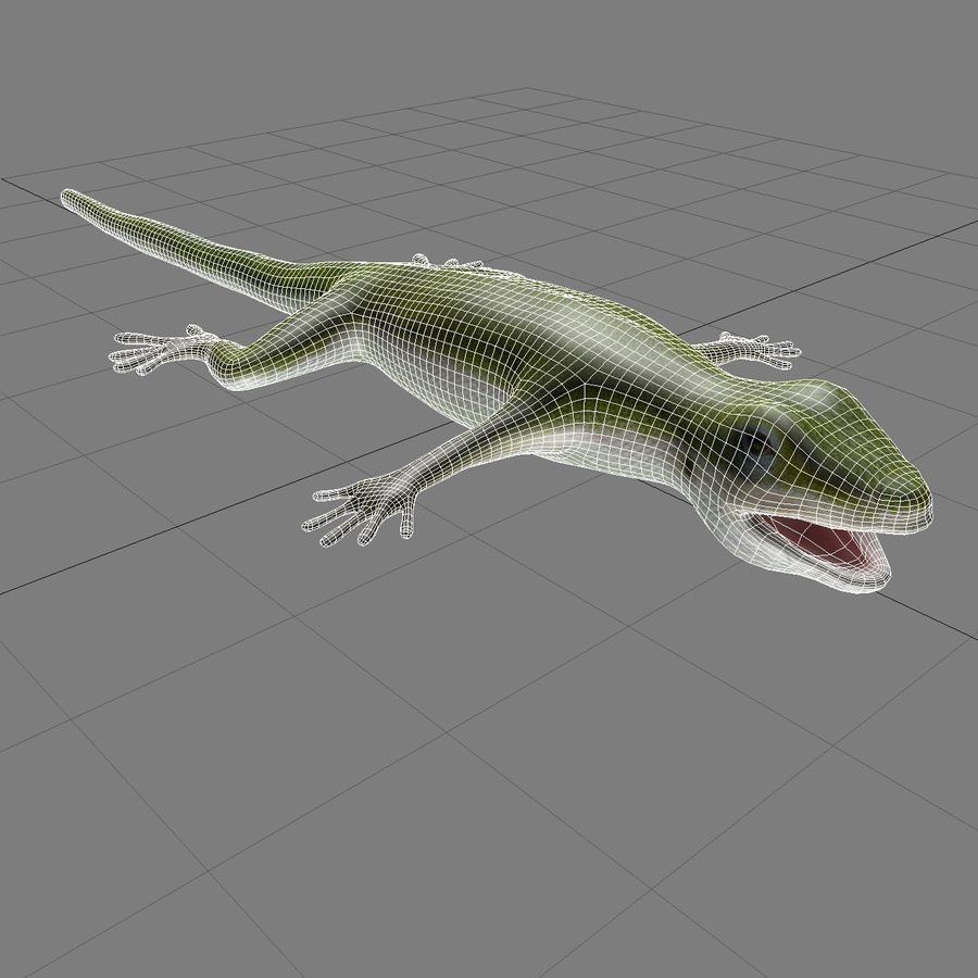Lizard 3D Lowpoly Model Rigged & Animated royalty-free 3d model - Preview no. 13